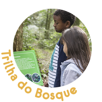 expo trilha bosque